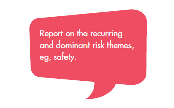 Report on the recurring and dominant risk themes, eg, safety.