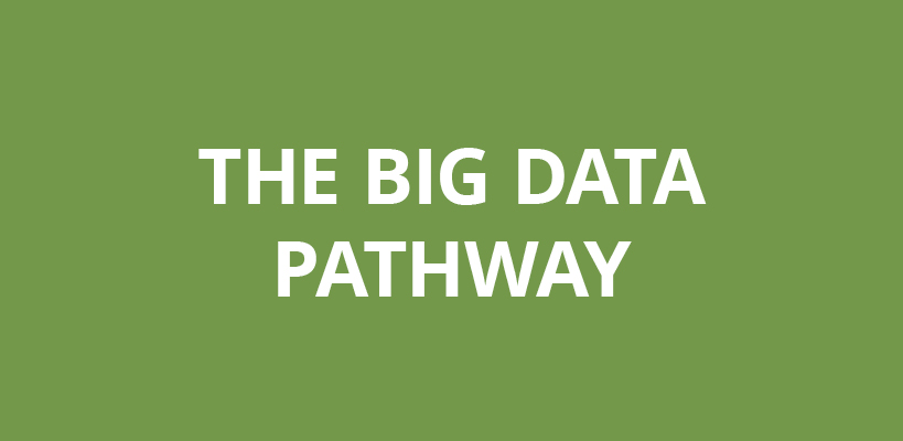 The big data pathway