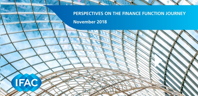 Perspectives on the Finance Function Journey