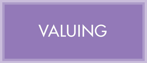 valuing-a-business-cgma.org-box-510x220